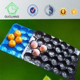 Fatto nell'imballaggio di plastica a gettare del cassetto della frutta di vendita calda pp della Cina Costco