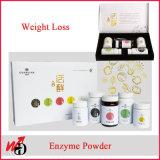 Gewicht-Verlust, der Karosserien-Nahrungsmittelenzym-Puder-Enzym abnimmt