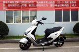 Motocicleta elétrica de 2016 adultos novos do estilo 1200W