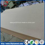 Panneau de forces de défense principale stratifié par vente chaude pour la décoration (WYGJ)