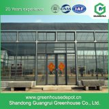 Casa verde de vidro do sistema de controlo automático para a agricultura