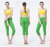 Esportes de venda novos Wear&Tights das mulheres melhores
