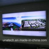Media Advertizing/Ad/Ads dell'interno/tabellone per le affissioni esterno della casella chiara del segno della bandiera del PVC della pellicola del LED