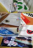 La parete/guardavia esterne che fa pubblicità alla bandiera del PVC, vinile firma la stampa della bandiera