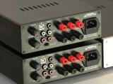 300W DSP+SMPS+Class D Stereoanlage-Verstärker