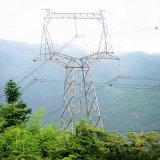 тип линейная башня Oxytropis 220kv стали передачи силы