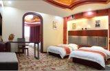 Het Meubilair van de Slaapkamer van het hotel/Meubilair van de Slaapkamer van de Luxe het Dubbele/de StandaardReeks van de Slaapkamer van het Hotel Dubbele/het Dubbele Meubilair van de Logeerkamer van de Gastvrijheid (chn-003)