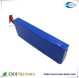 Batterie au Lithium 12V 40Ah de lumière solaire/ stockage d'énergie solaire