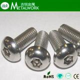 Torx Tasten-Kopf-Sicherheits-Maschinen-Schraube mit Pin