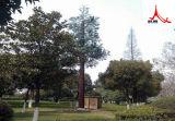 Башня Поляк антенны камуфлирования одиночная сделанная в Китае