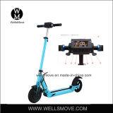 11kgs leichter 250W 36V 24V EL-Sport-Roller
