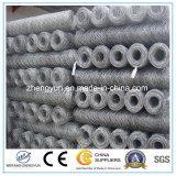 Il TUFFO caldo ha galvanizzato la rete metallica esagonale/la rete metallica esagonale galvanizzata elettrotipia