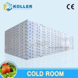 Capacidade de 30 toneladas para armazenar carne para sala fria