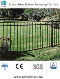 할인 가격으로 검술하는 안정되어 있고는 안전한 정원