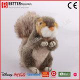 아기 아이를 위한 현실적 박제 동물 견면 벨벳 다람쥐 장난감