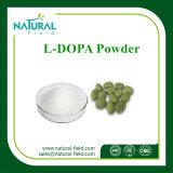 98%の99%のMucunaのPruriensのエキスの減量Lドーパの粉の製造業者