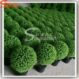 2016 Professional Hot Sale gros ballon artificielle plante Bonsai