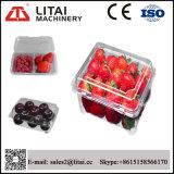 Macchina di plastica del contenitore della frutta della macchina di fabbricazione di piatto di controllo idraulico delle quattro stazioni