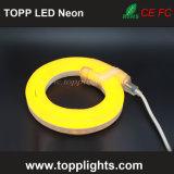 230V LED 건물 훈장 (를 위한 네온 코드 빛 TP-S-230V (120V/24V/12V))