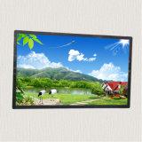 Monitor de la pantalla táctil del LCD de 55 pulgadas con la entrada de información de HDMI/DVI/VGA