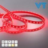 indicatore luminoso di striscia al neon flessibile della flessione della decorazione LED di cerimonia nuziale di festa 24V