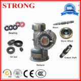 Motor eléctrico Gusano Reductor de construcción mástil y elevación