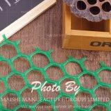 Clôtures de jardin en plastique vert Mesh/ maillage en plastique à tête hexagonale