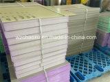 Máquina plástica alto mejorada de la protuberancia de la hoja de la PC del cliente en Chaoxu Company