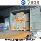 787*1092mm White Plywood Board for Carton Production