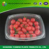 Пластмасовый контейнер прозрачной упаковки Vegetable