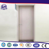 Fördernde China-Hersteller-Großhandelsfoto-Stahltür-Entwurf