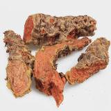 Rhodiola Rosea Extraia o pó que contenha 3% Salidroside