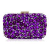 L'usager perlé de Rhinestone de Deisgn de femmes d'embrayage de soirée de sac à main de luxe neuf de sac plisse Eb874