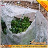Anti efeito UV Nonwoven Fabric para a agricultura