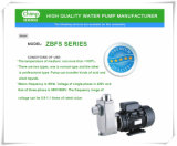 Zbfs Serien-Edelstahl-selbstansaugende chemische Wasser-Pumpen