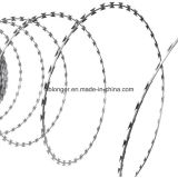 Fil de fer barbelé / fil de fer de concertine