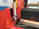 Type de Tableau plasma de commande numérique par ordinateur et machine de découpage de flamme pour le métal