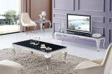 Tavolino da salotto moderno di vetro dell'acciaio inossidabile del basamento del salone TV