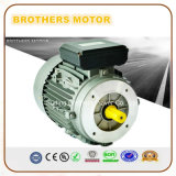 Ie3 220V de Markt van Europa van de Enige Fase voor AC Motor