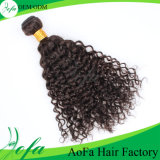 Kinky курчавые индийские человеческие волосы девственницы в рентабельной цене по прейскуранту завода-изготовителя
