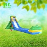 長い遊園地水ゲーム子供のための膨脹可能な水スライド