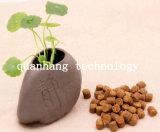 Лучший органических OEM Private Label сушеный Пэт Продовольственной
