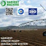 De Sproeier van het Kanon van de Regen van de Spoel van de slang voor het ZijSysteem van de Irrigatie van de Spil van de Beweging en van het Centrum voor Weide op Verkoop