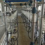 40 Sitzautomatisches Kuh-Melkwohnzimmer-Systems-elektronisches Messen