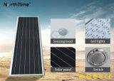 Réverbères verts haute puissance imperméables à l'eau du panneau solaire DEL d'énergie