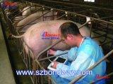 Ecógrafo veterinario portátil, computadora de mano Vet Escáner de ultrasonidos ultrasonidos de reproducción de animales
