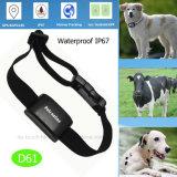 GPS van huisdieren Drijver met Waterdichte IP67 (D61)