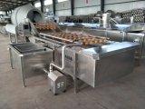 Промышленных фруктовых стиральная машина/Dragon фрукты Очистка машины
