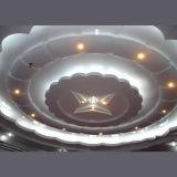 Comitati di alluminio iperbolici moderni per il rivestimento o il soffitto della parete