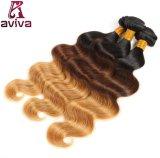 Ombre vierge brésilien Cheveux humains Extension de la trame